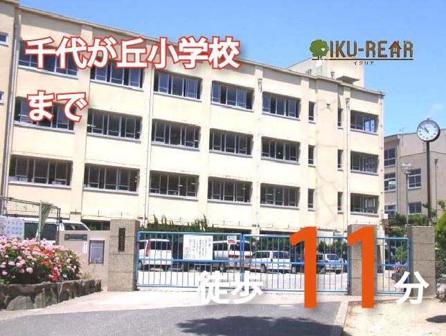 千代が丘小学校 約870m(徒歩11分)