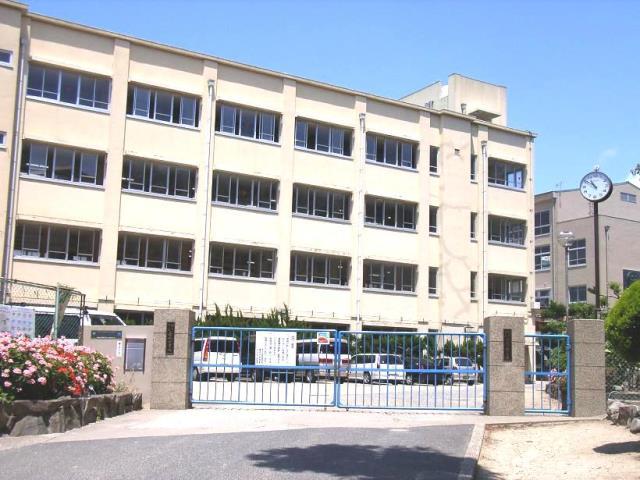 千代が丘小学校 910m(徒歩12分)